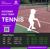 Pin Point Tennis coaching-  Orange Ball - Farnham