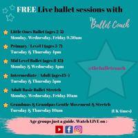 Free online Adult Basic Ballet classes