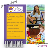 Little Bear's Music Classes for 3mths- 18m Online