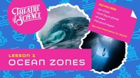 Live lesson: Ocean Week Lesson 1: Ocean zones!