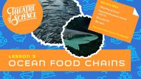 Live lesson: Ocean Week Lesson 3: Food Chains!
