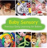 Baby Sensory Fleet -  Non Mobile Babies