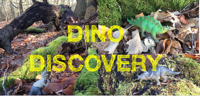 Dino Discovery Day! Under 5's at Wellesley Woodlands