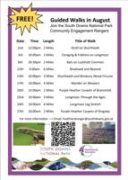 Free Guided walk - Bats on Ludshott Common