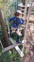GO APE Tree Top Junior 4yr+ (1m+)