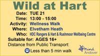 Wellness Walk - Hartley Wintney