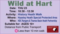 History Heath Walk- Hook