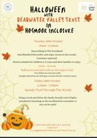 Story Telling 5-8yrs - Hogmoor enclosure - Bordon