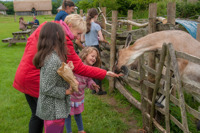 Bronze age Halfterm activities - Butsers ancient farm - south downs