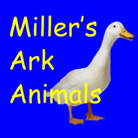 Photo of Miller's ark farm