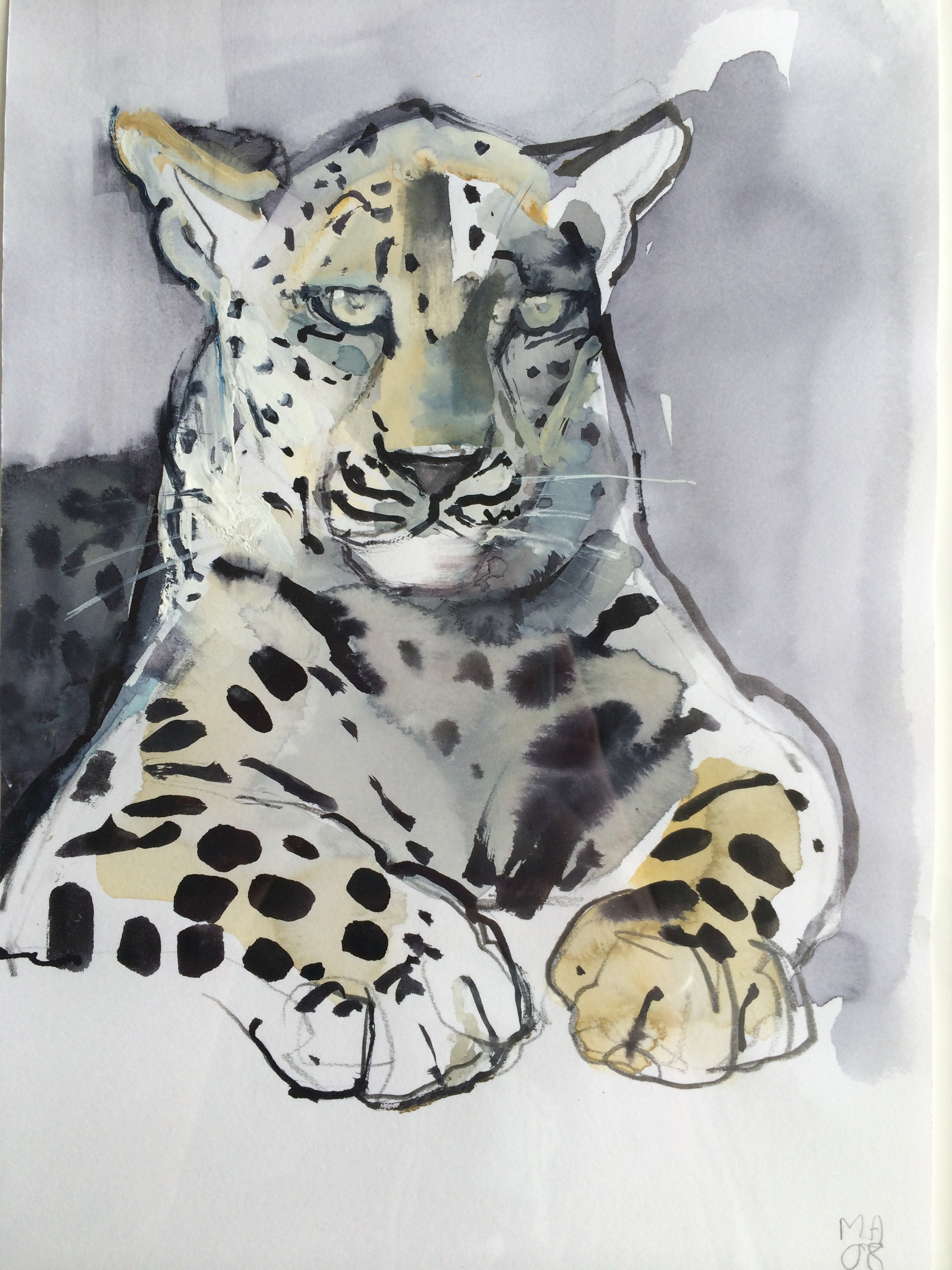 Lot 14 - Mark Adlington Arabian Leopard signed with initials and dated 08 watercolour and gouache on paper,