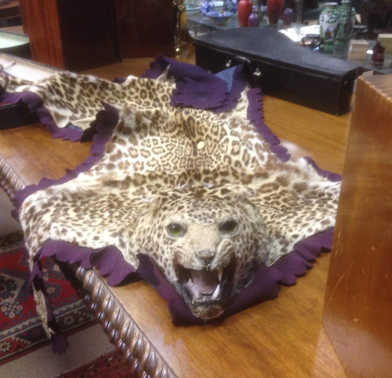 Cheetah Skin Rug