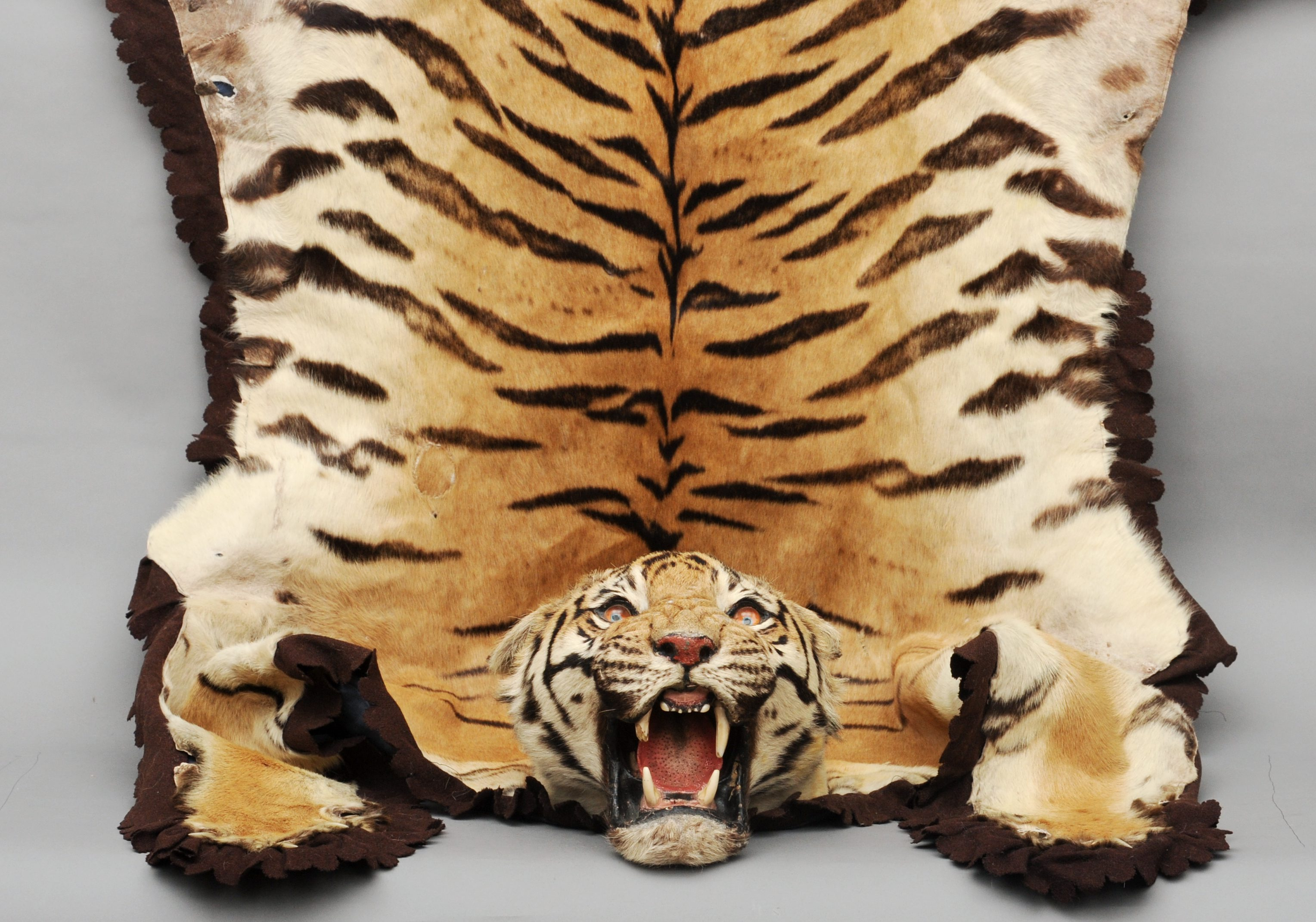 Lot 184   An Early 20th Century Tiger Skin Rug, Circa 1900, Probably Van