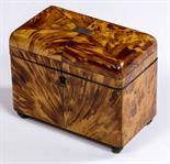 A REGENCY PERIOD WHITE METAL INLAID TORTOISE SHELL TEA CADDY, with dome top and raised on four brass