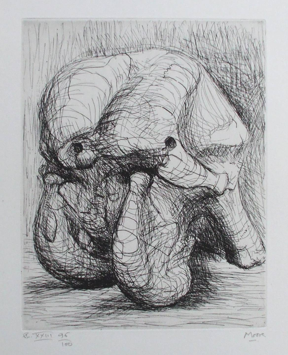 Line Drawing Natural Forms : Henry moore 'natural forms etching ed
