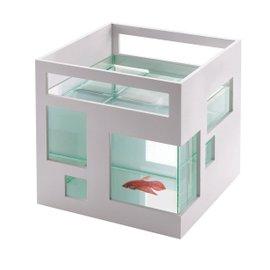 Acquario Fish Hotel