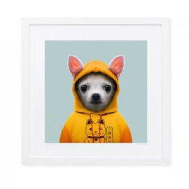 Stampa Chihuahua