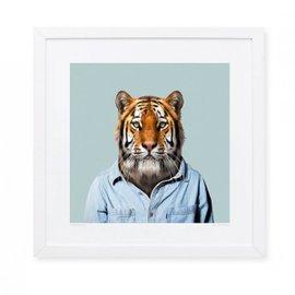 Stampa Tiger