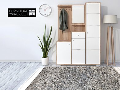 the-furniture-project