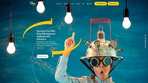 IDBS Website