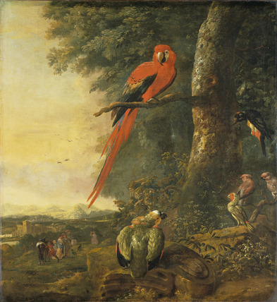 Red Macaw with other Birds