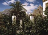 Garden of an Inn, Capri