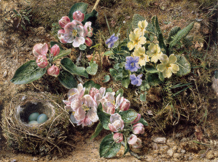 Birds Nest,  Apple Blossom and Primroses