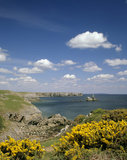 View of the coastline near to Broadhaven, Stackpole Quay on a beautiful summer's day