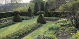 View of the Yew Garden at Hinton Ampner showing the topiary and tulips