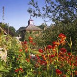 A view of the herb garden at Acorn Bank, looking through hot red summer flowers towards the dovecote