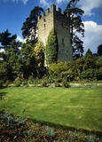 The Tower across the garden at Greys Court in summer