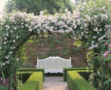 A rose covered arbour and garden seat at Mottisfont Abbey
