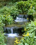 A view of the small waterfall at Trengwainton, at the stream that runs through the garden
