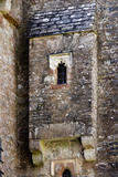 Windows at Compton Castle, Devon
