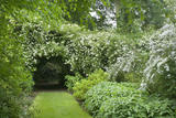 The garden at Dunham Massey, Cheshire