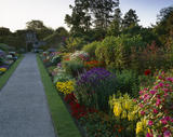 A view along one of the herbaceous borders at Nymans Gardens with a colourful array of blooming summer plants, taken in the late afternoon sun