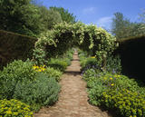 A floral arch over a path in the walled garden at Wallington