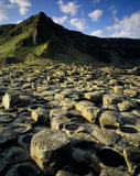 A view of the Giant's Causeway in Northern Ireland, taken in the sunlight