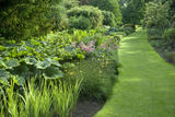 The Canal Border at Dunham Massey, Cheshire