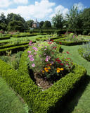 "Summer flower beds in the garden at Westbury Court, including Cosmos ""Sensation"" in the foreground"