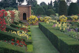 Rose border looking towards topiary garden at Packwood House in the Summer