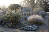 A sharp frost has cloaked the Rose Garden foliage at Sissinghurst Castle Garden, near Cranbrook, Kent