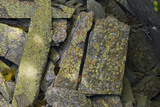 Lichen on rocks in the old quarry near the summit of Castle Crag, Cumbria