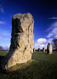 Some of the stones in the Avebury stone circle