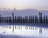 Low tide breakwater posts silhouetted against the sea and horizon at East Head, West Wittering, near Chichester, West Sussex
