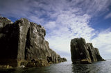 "A view of ""The Pinnacles"", a set of cliffs that rise vertically out of the sea, part of Staple Island in the Farne Islands"
