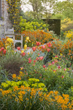 Tulips, wallflowers and euphorbia in the Cottage Garden