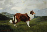 Christopher', Collie Dog in Lake District Landscape