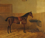 A Saddled Bay Hunter in a Stable
