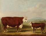 Prize Cow and Calf: 1856